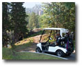 Power Cart included at most courses