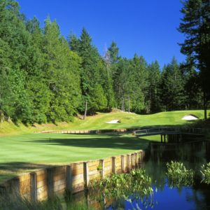 Why You Should Golf At Olympic View Golf Course