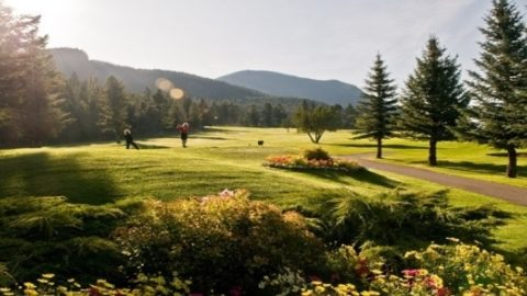 Best Golf Courses Near Radium, BC