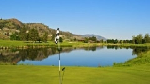 Why You Should Golf at Rivershore Estates and Golf Links