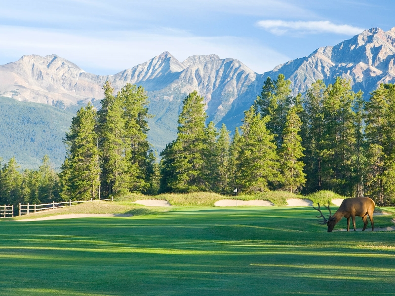 fairmont hot springs resort, golf bc, canada